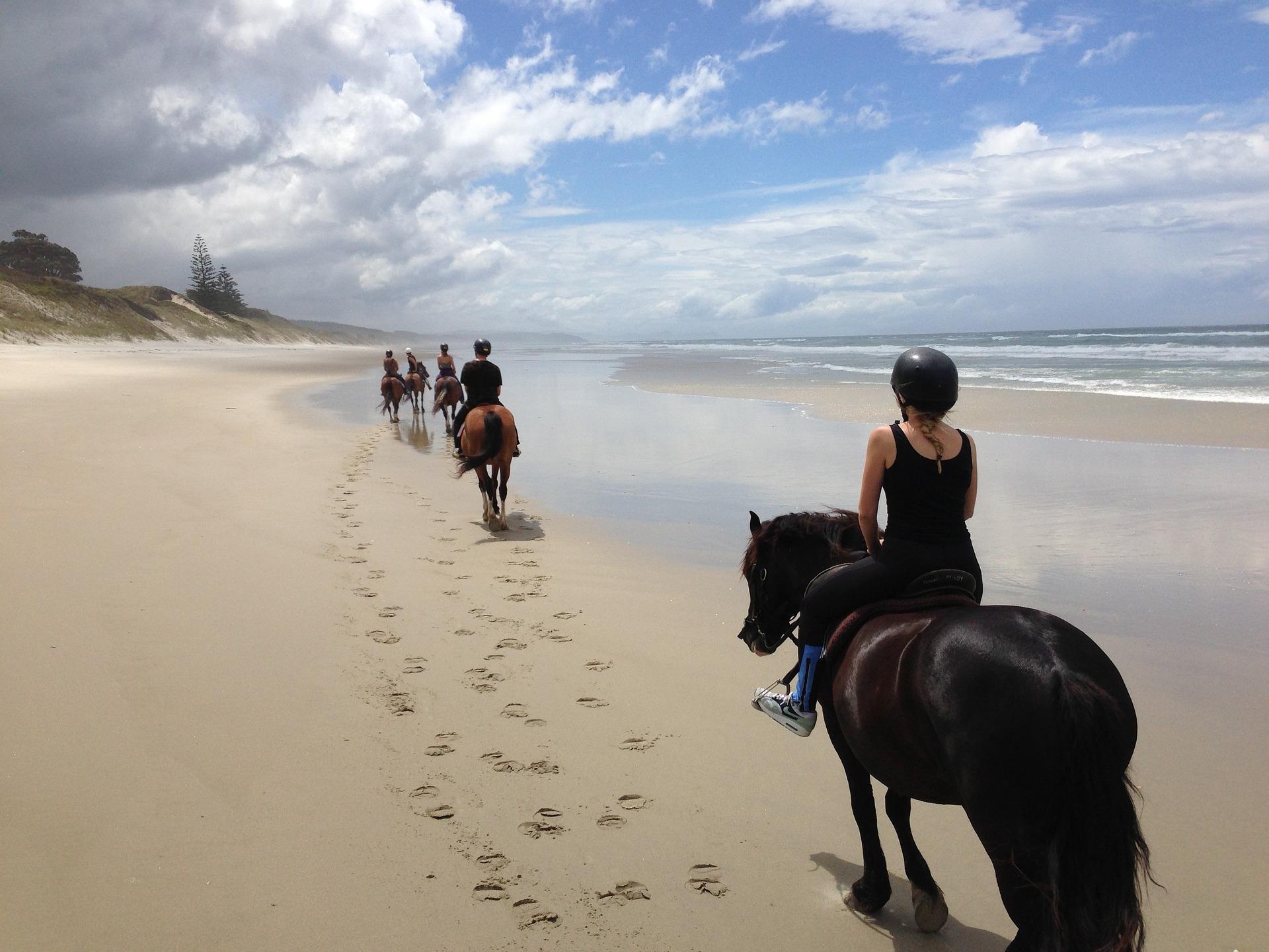 Personnes qui font une randonnée à cheval sur une plage